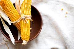 Épis de maïs secs dans une cuvette Image libre de droits