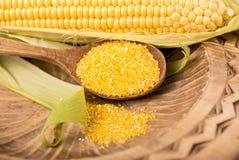 Épis de maïs sur le fond blanc Photographie stock