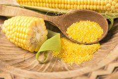 Épis de maïs sur le fond blanc Photos stock