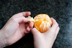 Épluchage d'une mandarine photographie stock libre de droits