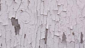 Épluchage de la peinture blanche sur la texture en bois de fond Photos libres de droits