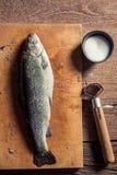 Épluchage des coquilles du poisson frais Image libre de droits