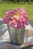 Época de hortensias fotografía de archivo libre de regalías