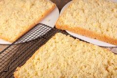 Éponge découpée en tranches de gâteau Photos libres de droits