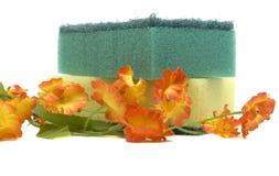 Éponge et fleur Image libre de droits