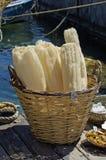 Éponges dans le panier dans le port, île de Rhodes, Grèce Images libres de droits