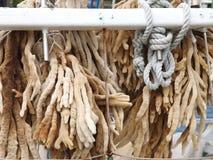 Éponges de doigt se desséchant sur un bateau de plongée Images stock