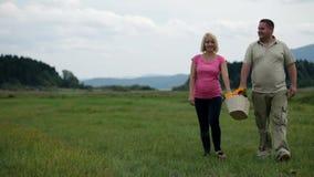 Épouse et mari marchant avec vivacité avec le panier de pique-nique banque de vidéos
