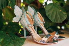Épouser des chaussures d'une jeune mariée dans les feuilles d'un arbre de kiwi Photos libres de droits