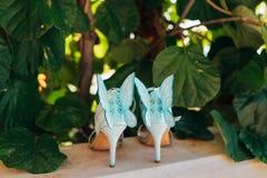 Épouser des chaussures d'une jeune mariée dans les feuilles d'un arbre de kiwi Photo stock