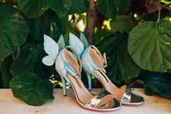 Épouser des chaussures d'une jeune mariée dans les feuilles d'un arbre de kiwi Image stock
