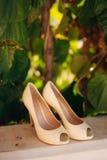 Épouser des chaussures d'une jeune mariée dans les feuilles d'un arbre de kiwi Photographie stock