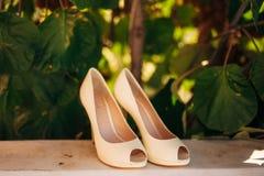 Épouser des chaussures d'une jeune mariée dans les feuilles d'un arbre de kiwi Photos stock