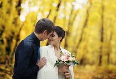 Épouser en parc d'automne image stock