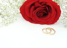 Épouser invitent avec rose et des anneaux Photographie stock libre de droits