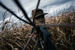 Épouvantail effrayant dans un chapeau photo libre de droits