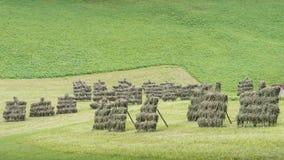 Épouvantails sur l'herbe dans les Alpes de l'Italie Photo libre de droits