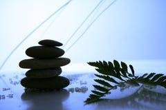 Équilibre dans la nature Image libre de droits
