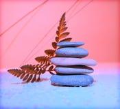 Équilibre dans la nature Image stock