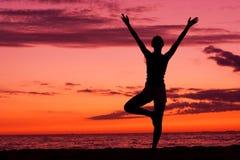Équilibre de coucher du soleil. Images libres de droits