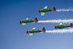Équipe acrobatique aérienne de Harvard de lions de vol de Castrol Photographie stock