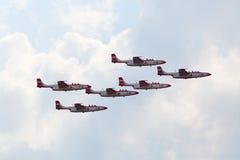 Équipe acrobatique aérienne de l'Armée de l'Air de la Pologne Images libres de droits