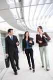 Équipe d'affaires d'homme et de femme Photo libre de droits