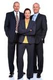 Équipe d'affaires mûres sur le blanc Image stock