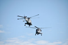 Équipe d'affichage d'hélicoptère de chats noirs Images stock