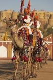 Équipe d'affichage de chameau, Jaisalmer Images stock