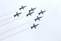 Équipe d'avion à réaction de Breitling Photo libre de droits