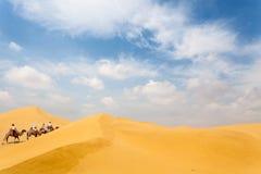 Équipe de chameau dans le désert Image stock