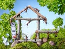 Équipe de fourmis construisant la maison en bois, travail d'équipe