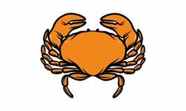 Équipe de logo d'illustration de mer de poissons Photo stock