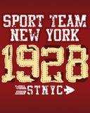 Équipe de sports de New York illustration libre de droits
