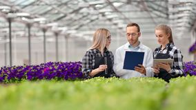 Équipe de travailleur agricole faisant la recherche de la science à la serre chaude utilisant le PC de tube de verre et de compri banque de vidéos