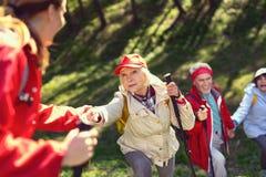 Équipe gaie trimardant dans la forêt Photographie stock