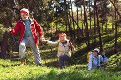 Équipe inspirée trimardant dans la forêt Photographie stock libre de droits