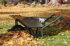 Équipement de nettoyage dans un jardin Images libres de droits
