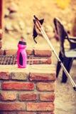 Équipement de nordic et bouteille d'eau de marche, tir extérieur image stock