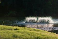 Équipement de traitement de l'eau, turbines de l'eau avec les palettes en plastique Images stock