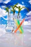 Équipement de verrerie de laboratoire, installation d'essai images stock