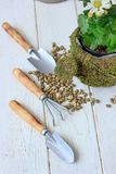 - Équipement pour la maison faisant du jardinage - petits instruments de jardinage à la maison Photographie stock libre de droits