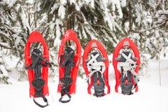 Équipement pour une hausse pendant l'hiver Images libres de droits