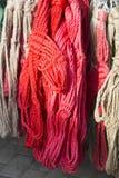 Équipement rouge et blanc fabriqué à la main de licou pour des chevaux et des cavaliers Photos stock