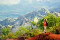Équipez apprécier la vue renversante dans le canyon de Waimea Photographie stock libre de droits