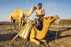 Équipez charger ses chameaux au camp de base de bière anglaise d'Erta pour le voyage du ` s de nuit jusqu'au volcan Photographie stock