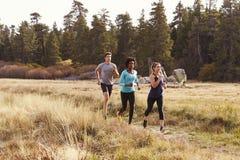 Équipez et deux femmes courant près d'une forêt image libre de droits