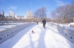 Équipez et sa promenade de chien avec le chandail rouge au-dessus du pont de voûte dans la neige fraîche dans le Central Park, Ma Photos stock