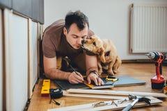 Équipez et son chien effectuant le travail de rénovation à la maison Images stock